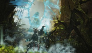 Guild Wars 2 screenshot8